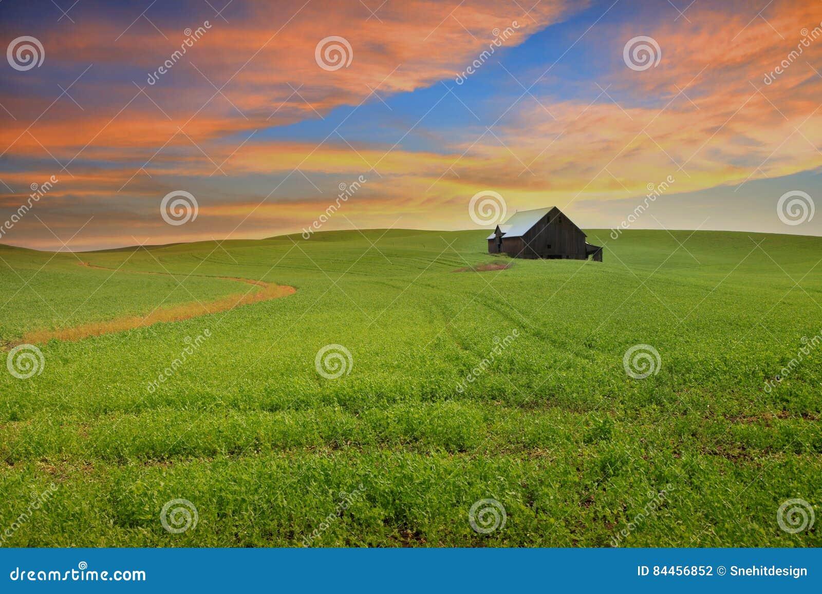 Paesaggio scenico