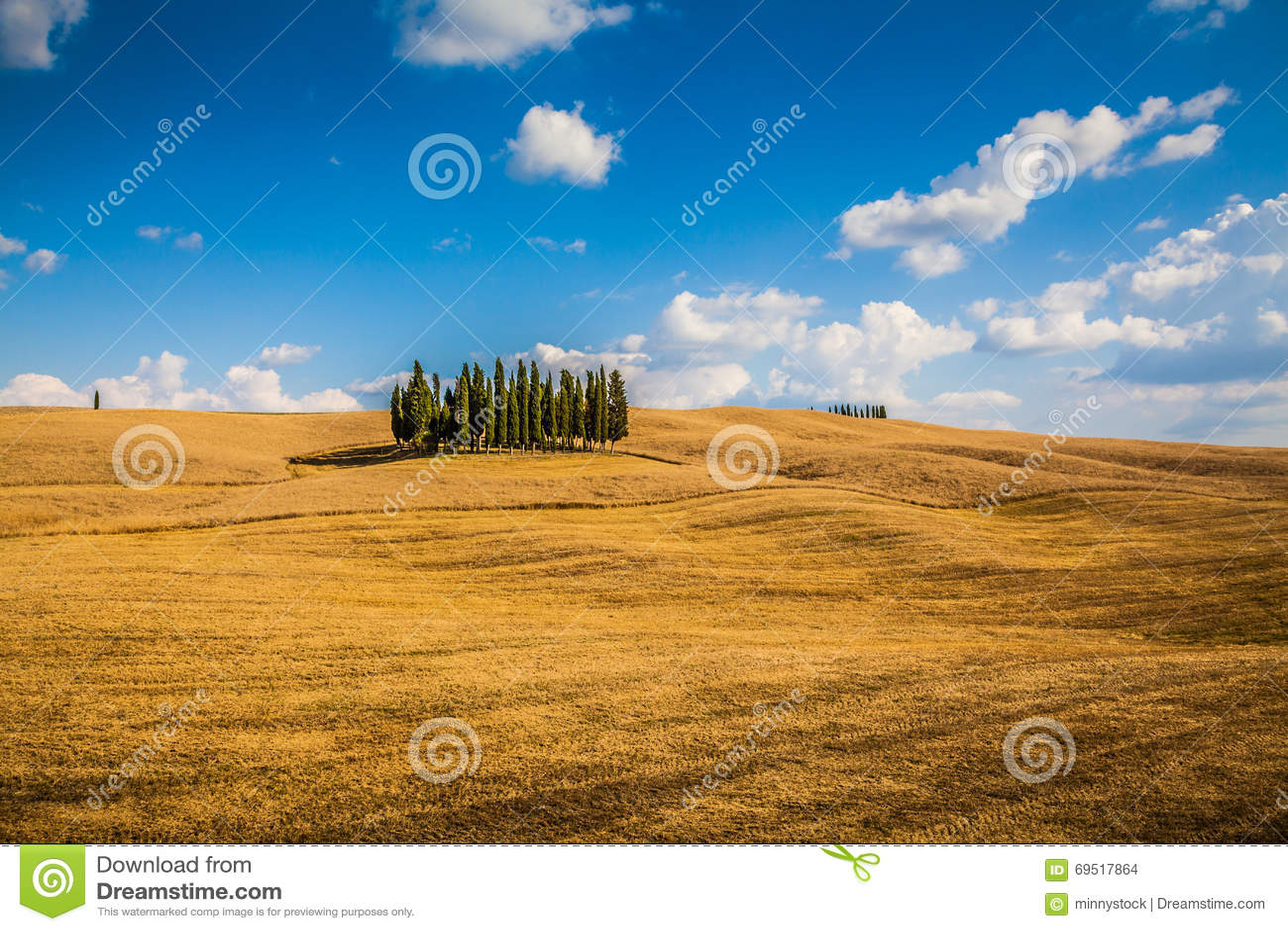 Paesaggio scenico con gli alberi di cipresso valle di d for Case di campagna della collina del texas
