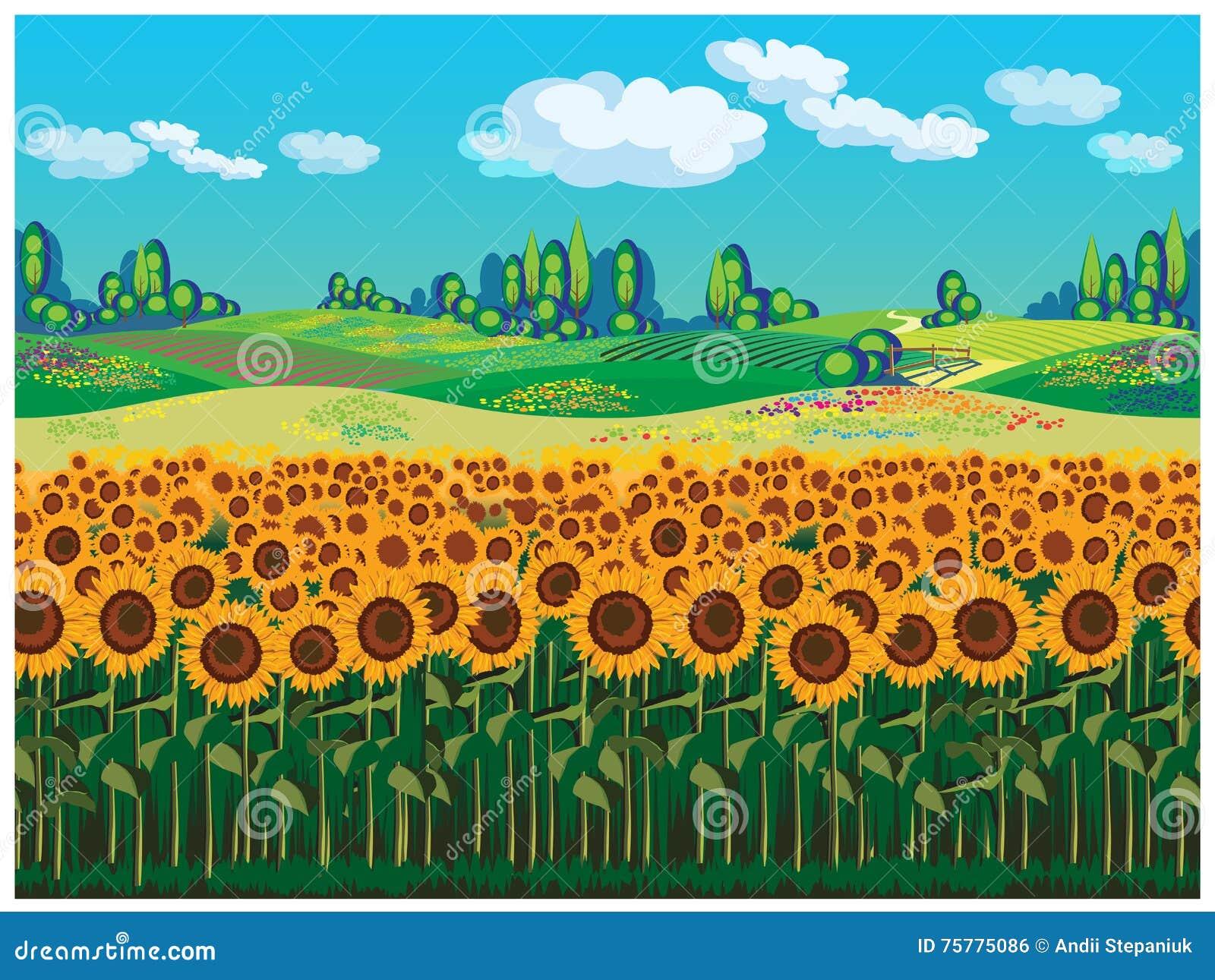 Paesaggio Scenico Con I Girasoli Illustrazione Vettoriale ...