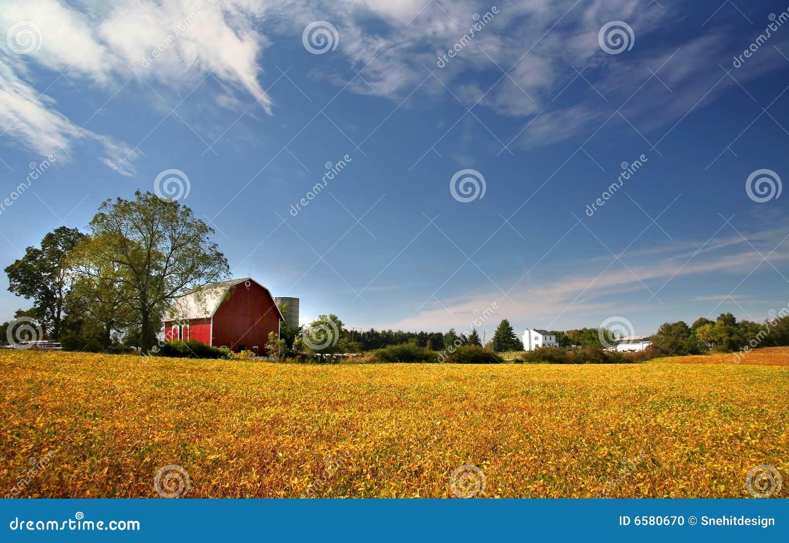 Paesaggio scenico dell azienda agricola