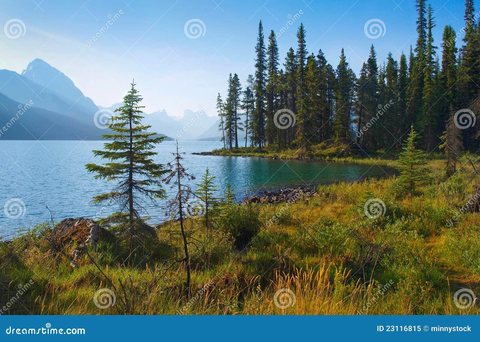 Paesaggio scenico della regione selvaggia nel Canada