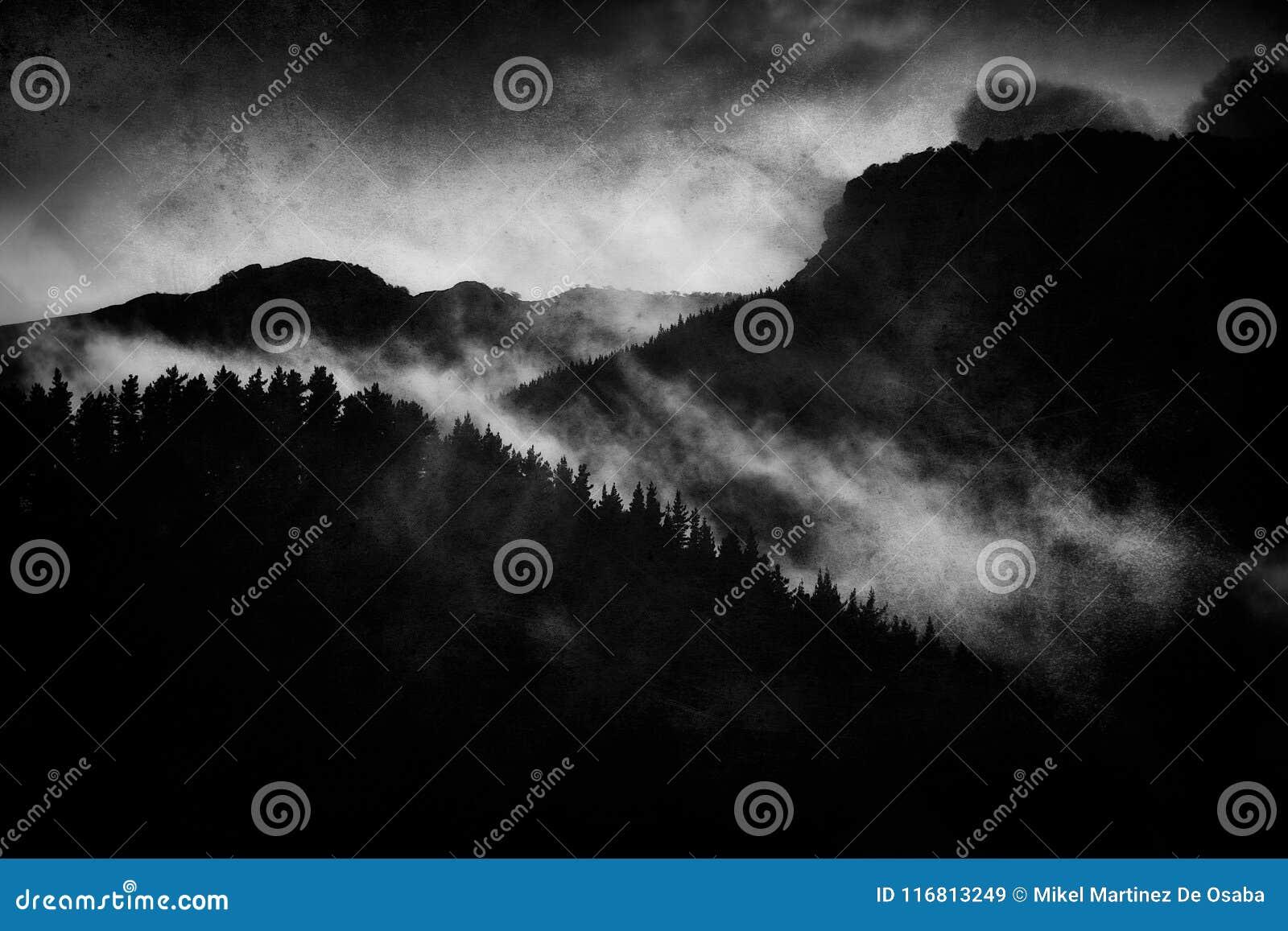 Paesaggio scuro con la foresta nebbiosa alla notte
