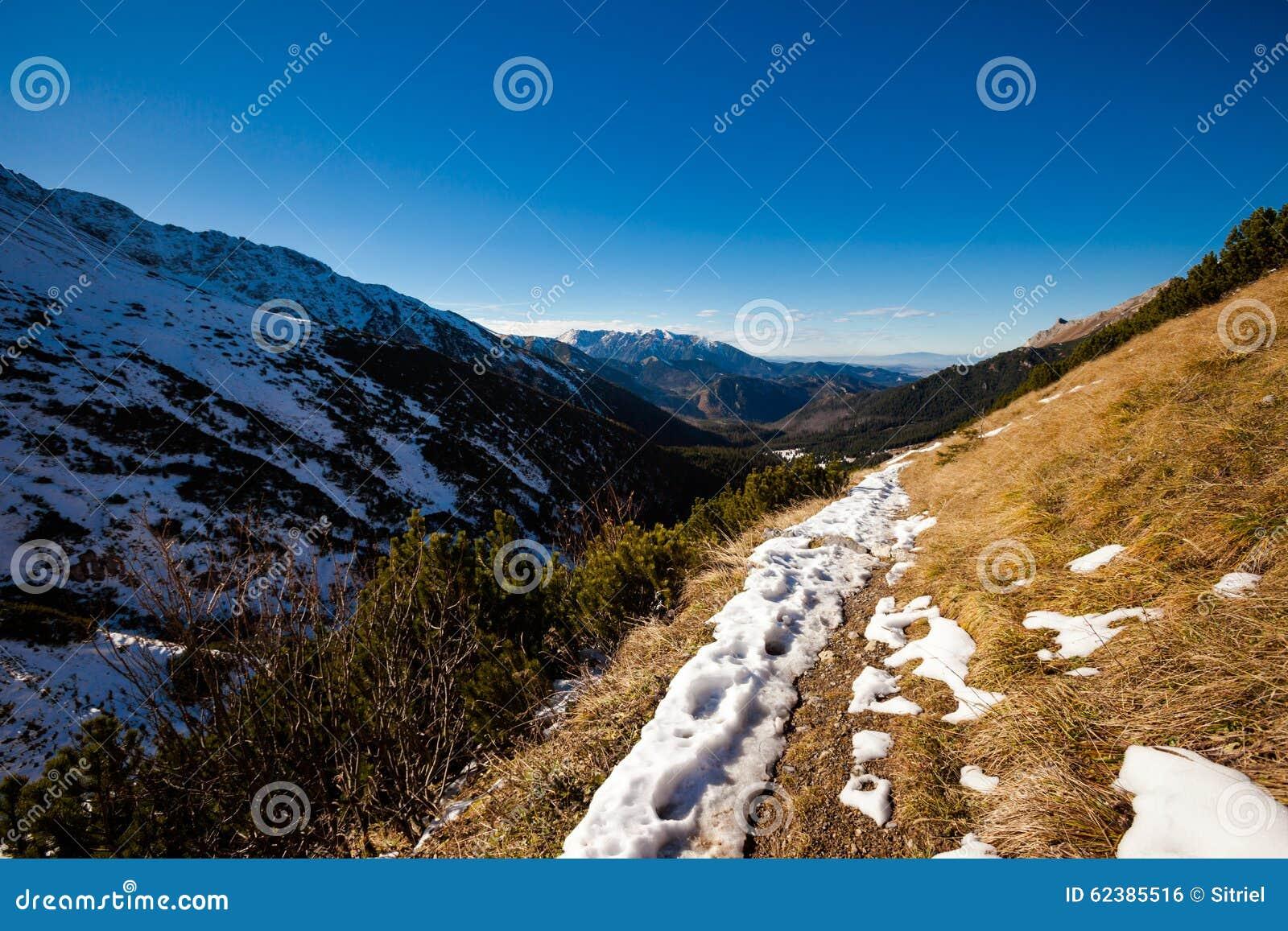 Paesaggio slovacco delle montagne di Belianske Tatry