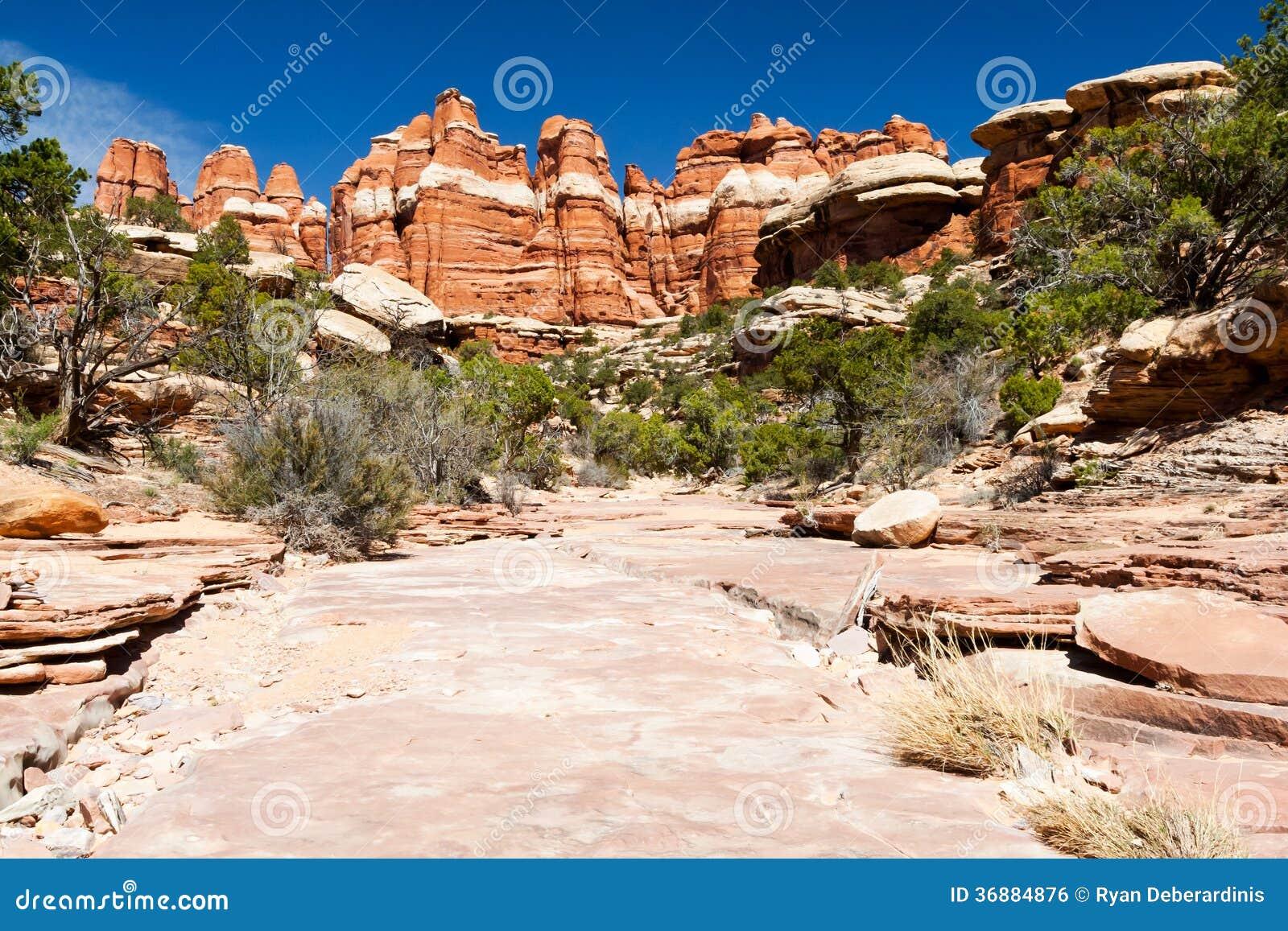 Download Paesaggio Sterile Del Deserto Nel Sud-ovest Americano Fotografia Stock - Immagine di sabbia, solo: 36884876