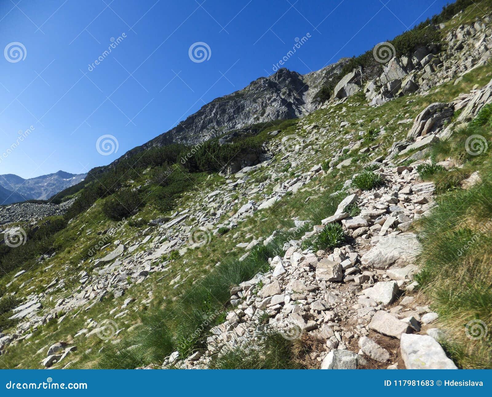 Download Paesaggio Stupefacente Dall'itinerario A Scalare Un Picco Di Vihren, Montagna Di Pirin Immagine Stock - Immagine di nave, bulgaria: 117981683