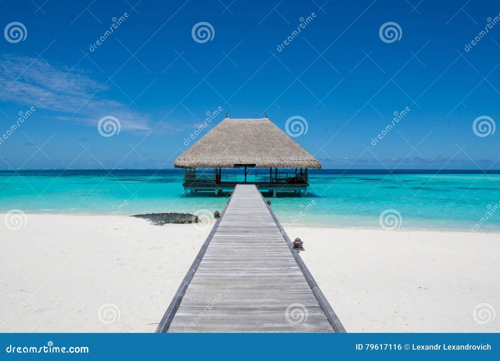 Paesaggio tropicale con il ponte di legno e casa sull - Depurare l acqua di casa ...