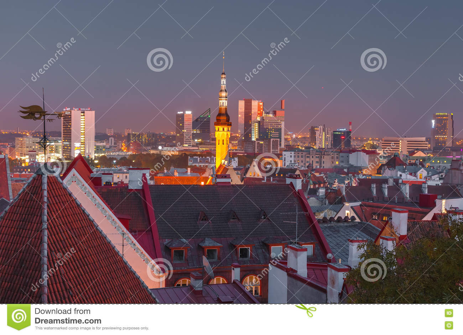 Paesaggio urbano aereo di notte di Tallinn, Estonia