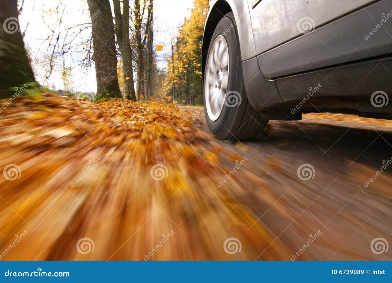 Paese dell automobile che guida strada