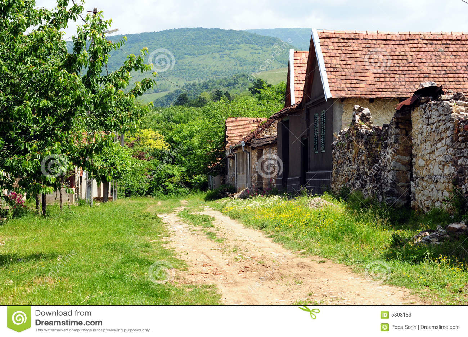 Download Paesino Di Montagna Del Transylvania Immagine Stock - Immagine di destinazioni, costruzioni: 5303189