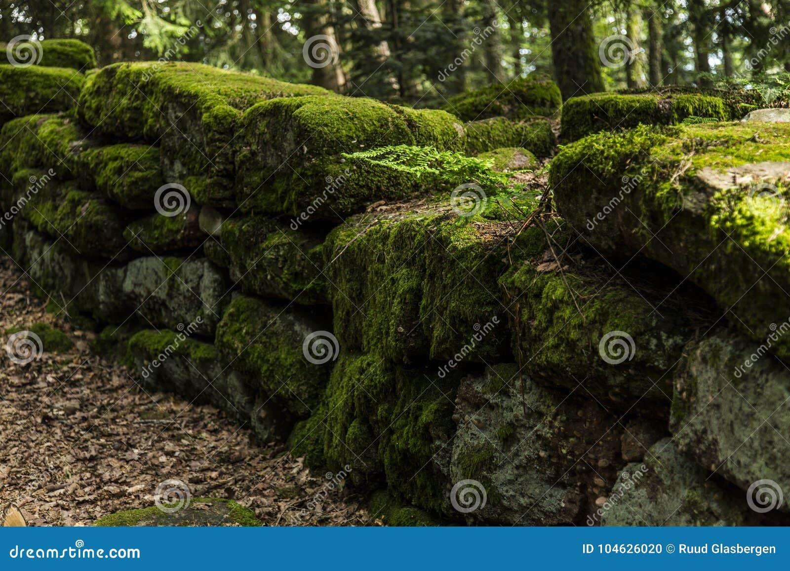 The Pagan Wall, Mont Sainte Odile, Ottrott, Alsage, France