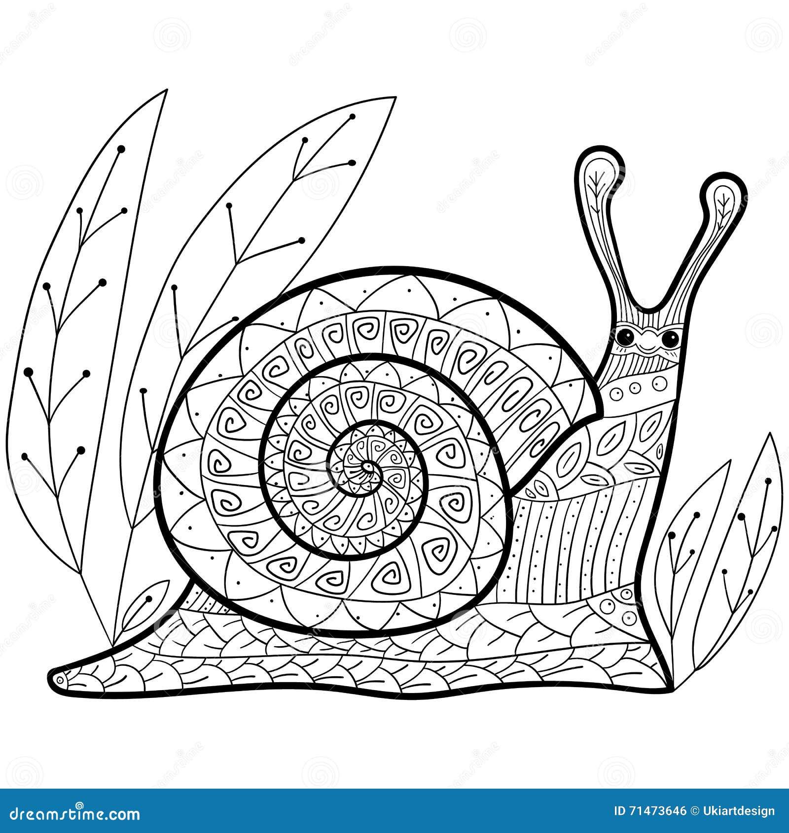 Coloriage Descargot.Page Adulte De Livre De Coloriage D Escargot Mignon Illustration De
