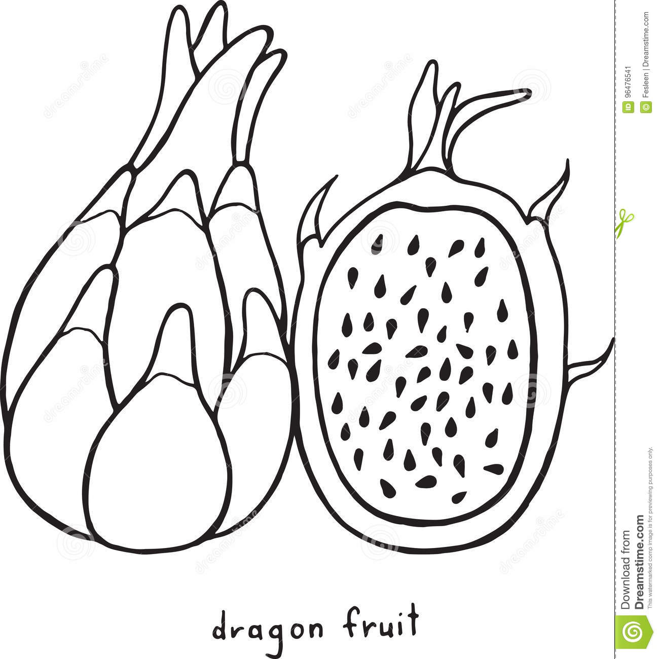Coloriage Fruits Tropicaux.Page De Coloration De Fruit Du Dragon Art Noir Et Blanc F De Vecteur