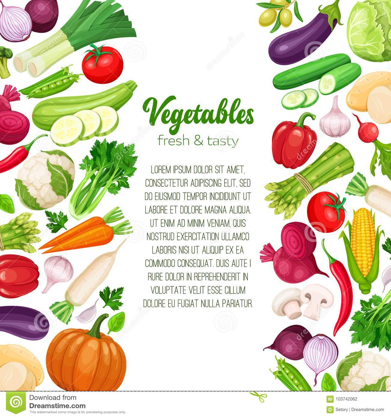 template with vector vegetables stock vector illustration of corn