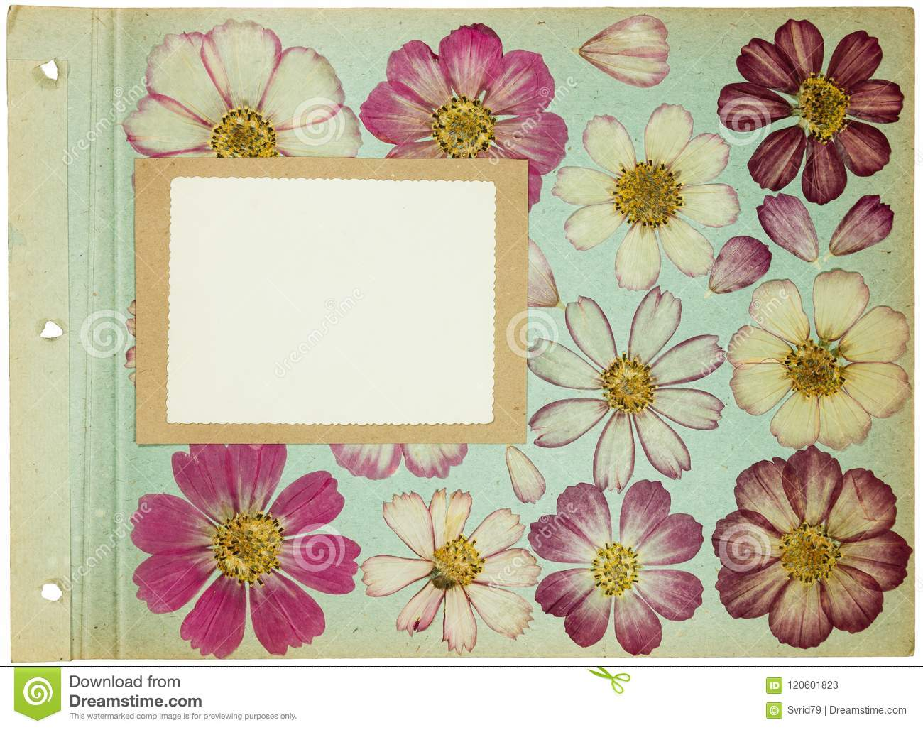 page rustic elements. Modren Elements Page From An Old Photo Album Pistachio Color Scrapbooking Element  Decorated With Leaves Flowers And Petals Cosmos Rustic Country Style Page In  Inside Rustic Elements E