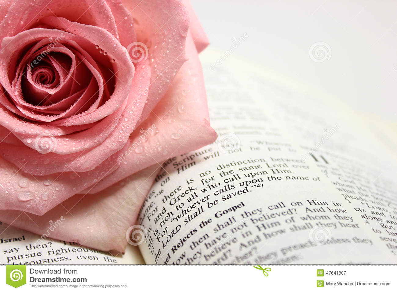 Page Of An Open Bible Page Stock Photo - Image: 47641887