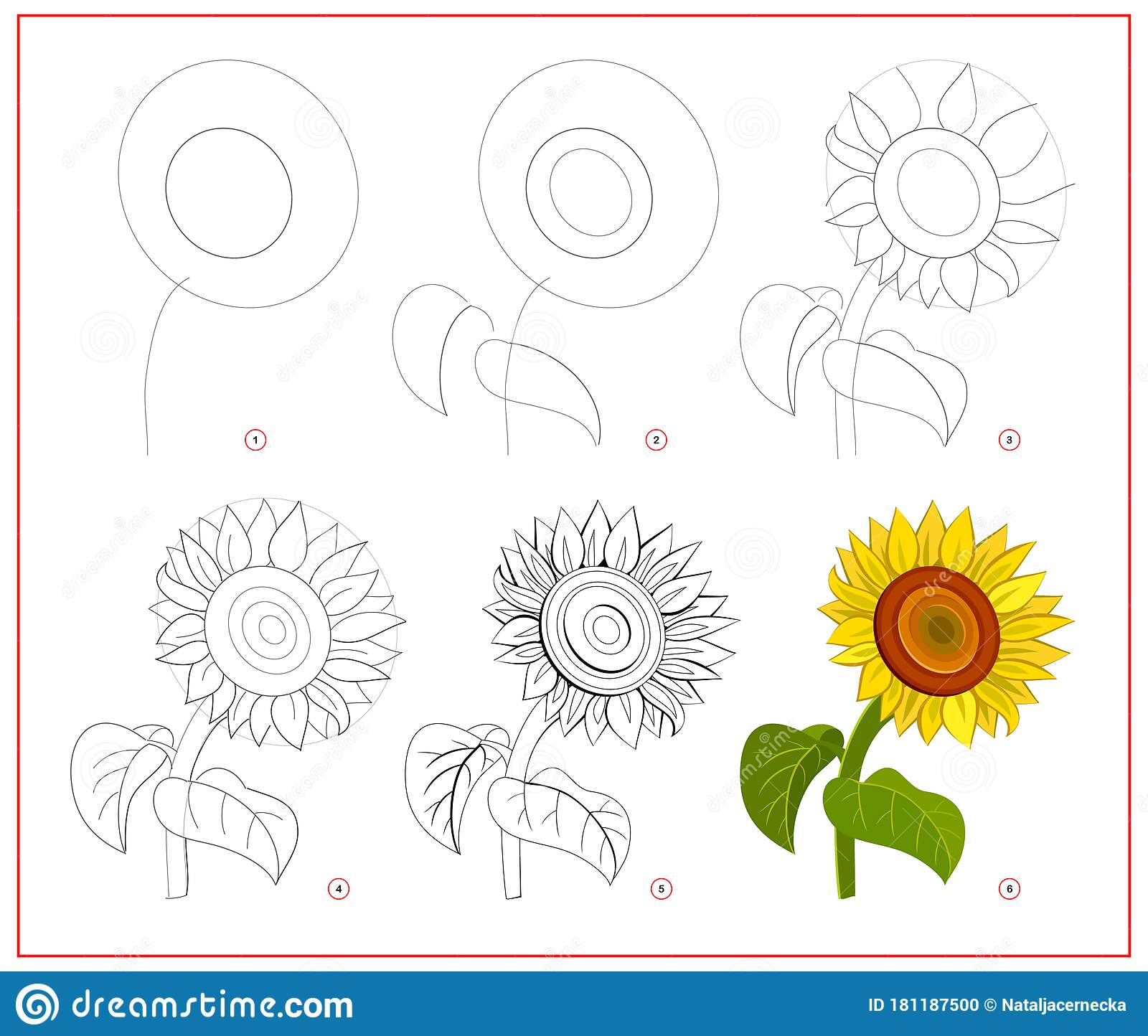 Sunflower Coloring Stock Illustrations 1 164 Sunflower Coloring Stock Illustrations Vectors Clipart Dreamstime