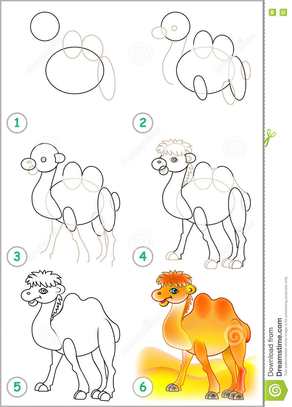 Uncategorized How To Draw A Camel Step By Step page shows how to learn step by draw a camel stock vector camel