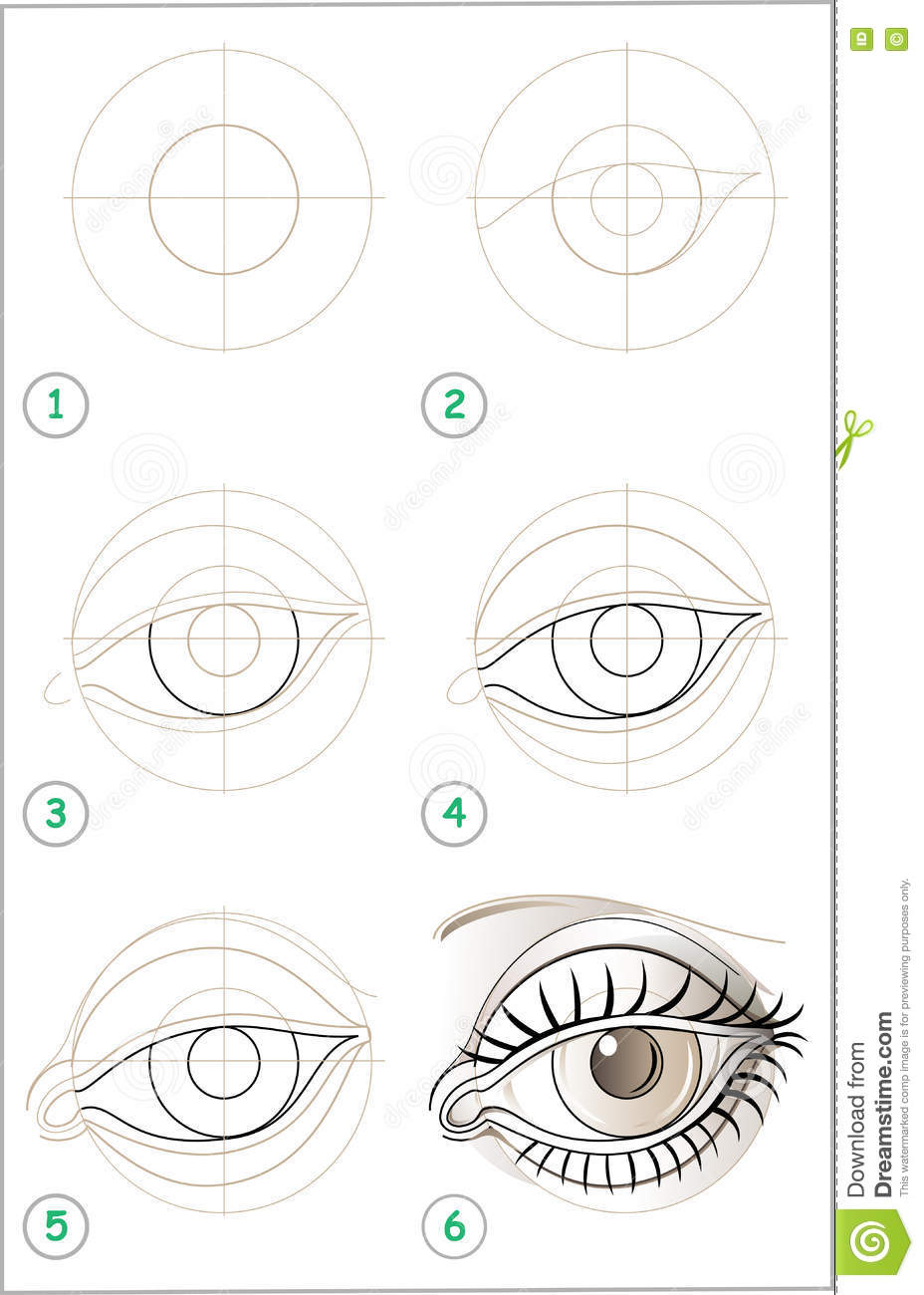 Page Shows How To Learn Step By Step To Draw An Eye Stock Vector