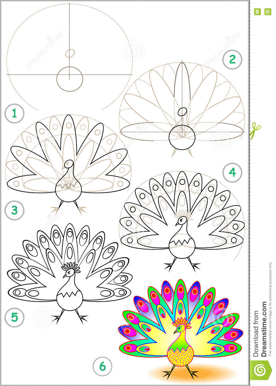 page shows how to learn step by step to draw a peacock