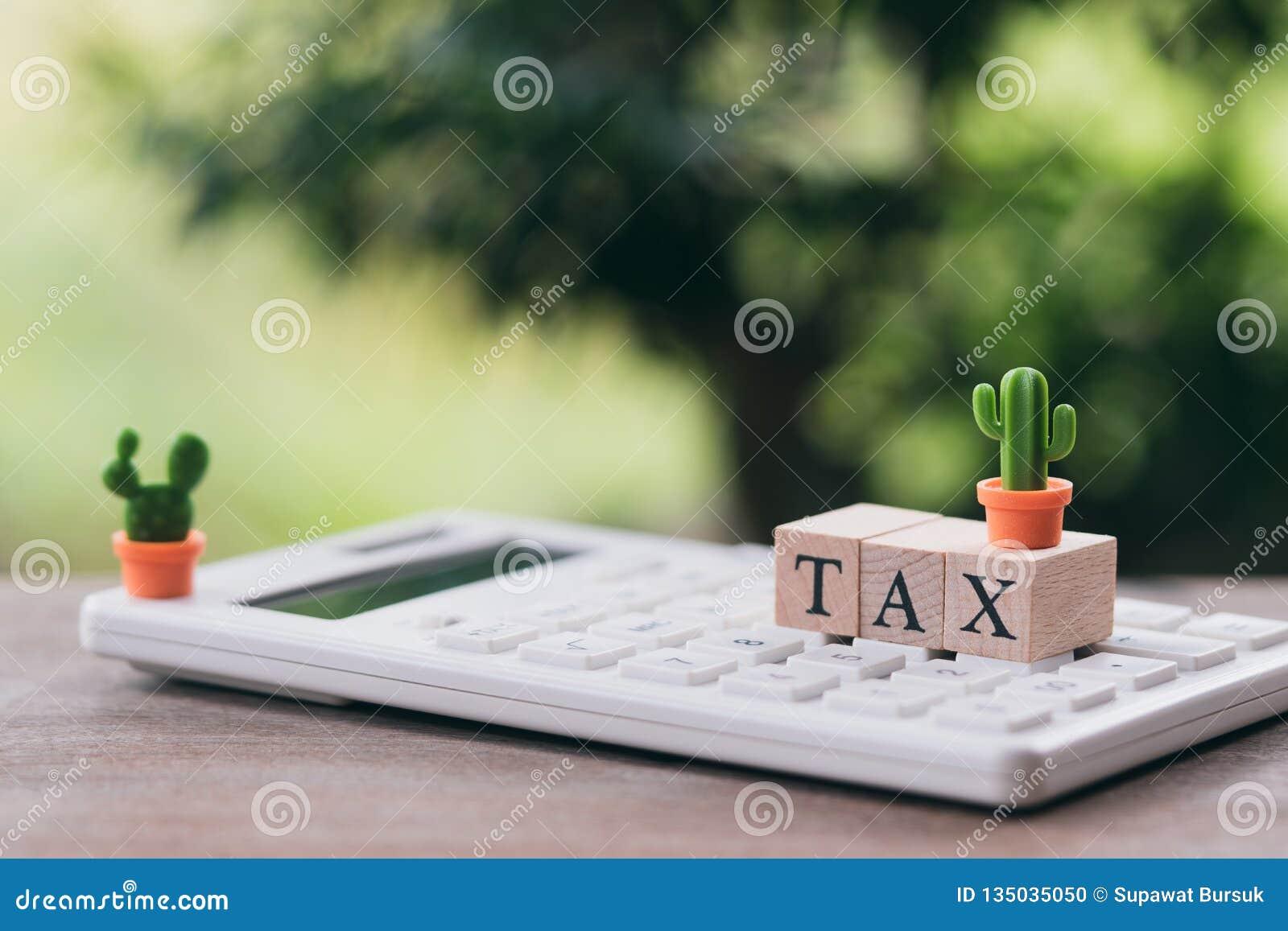 Paghi la TASSA di reddito annuo l anno sul calcolatore usando come il concetto di affari del fondo e concetto di finanza con lo s