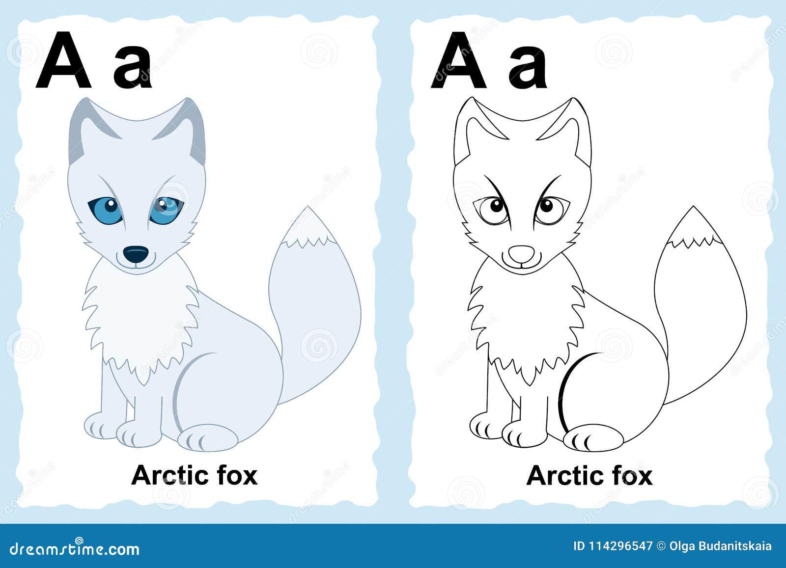 Pagina Del Libro Da Colorare Di Alfabeto Con Clipart Del Profilo A Colore Illustrazione Vettoriale Illustrazione Di Disegno Nave 114296547