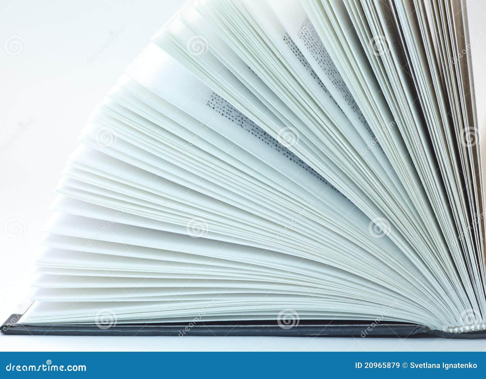 Paginaciones del libro