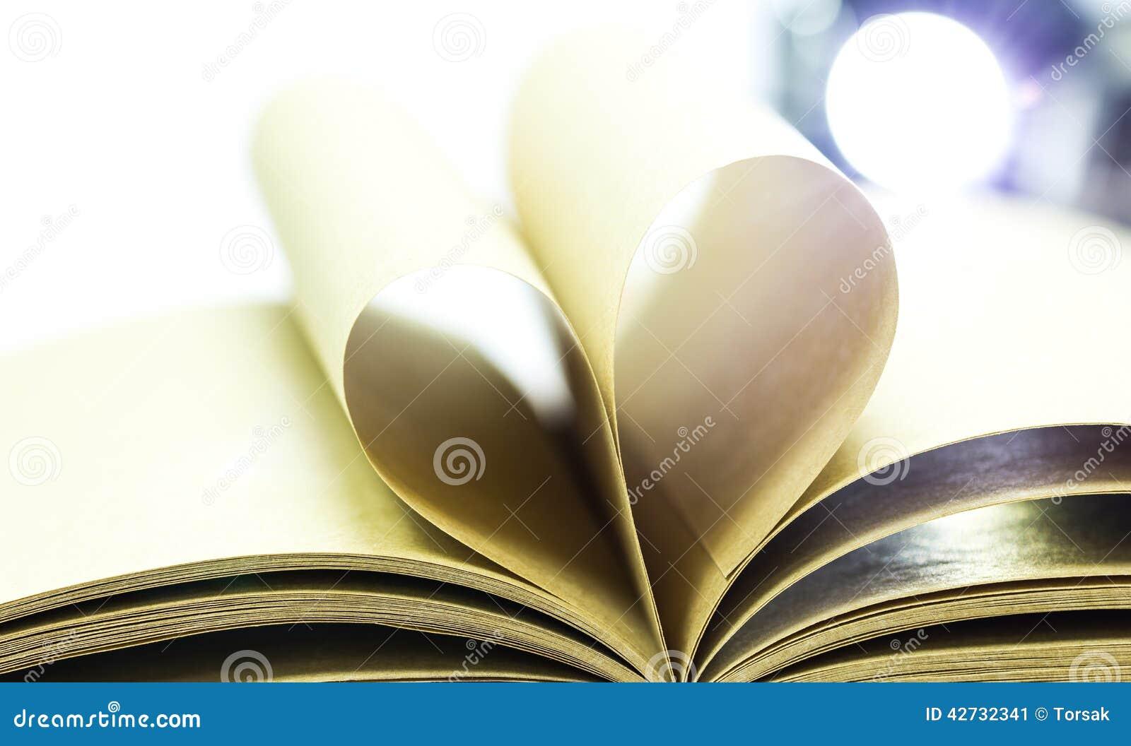 Paginaciones del libro abierto