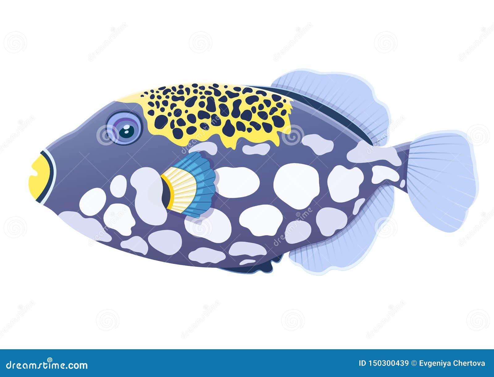 Pagliaccio Del Pesce Del Pesce Balestra Nero Disegno Realistico