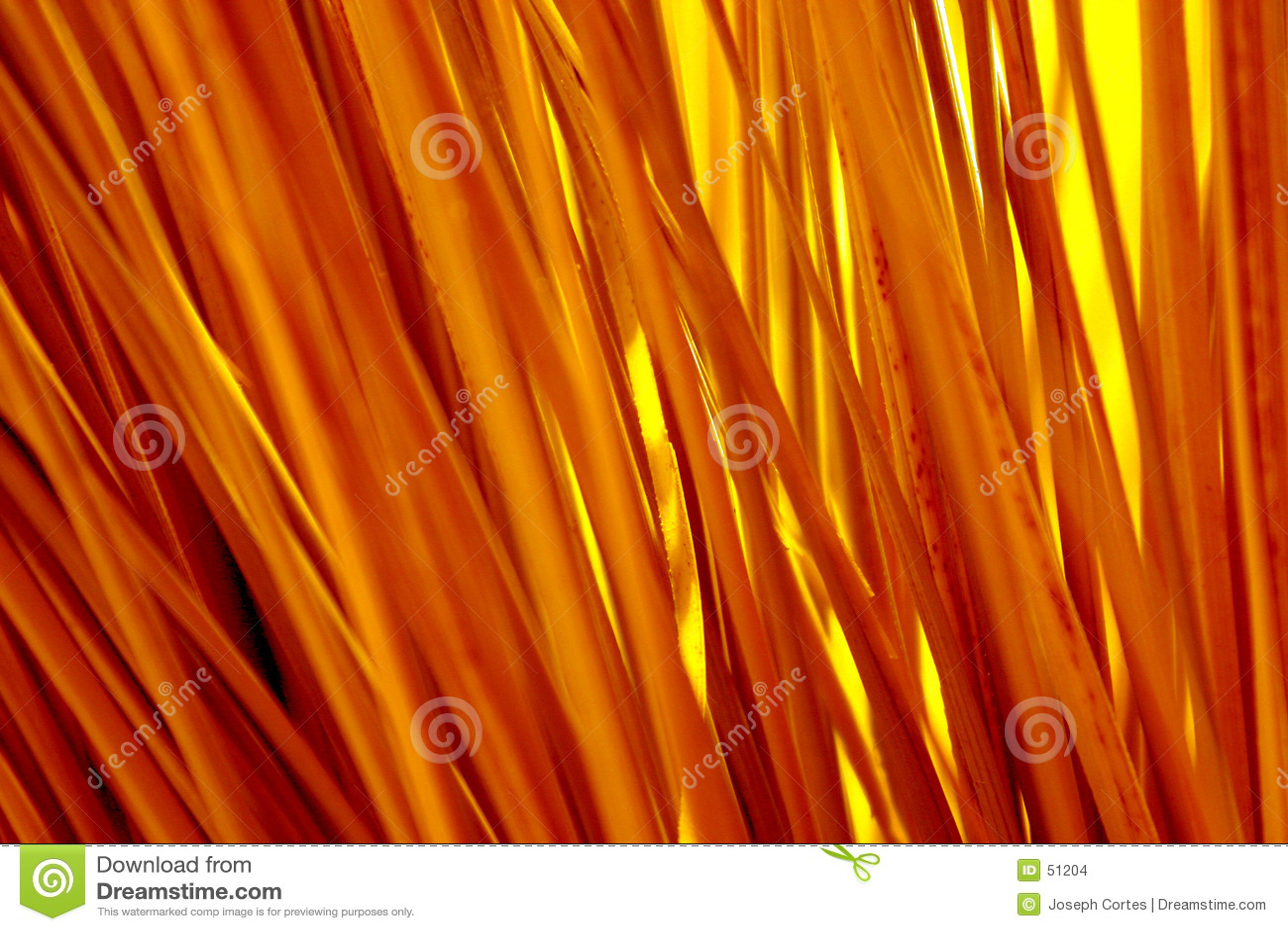 Paglie luminose di colore giallo di colore
