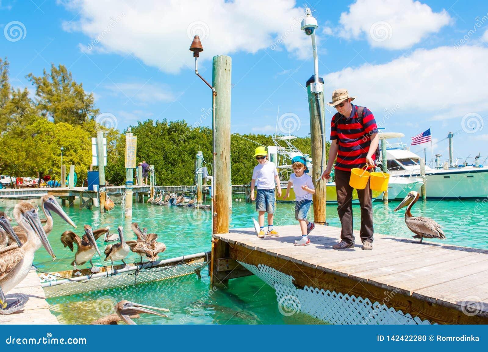 Pai novo e dois meninos da criança que alimentam peixes e pelicanos marrons grandes no porto de Islamorada, chaves de Florida hom