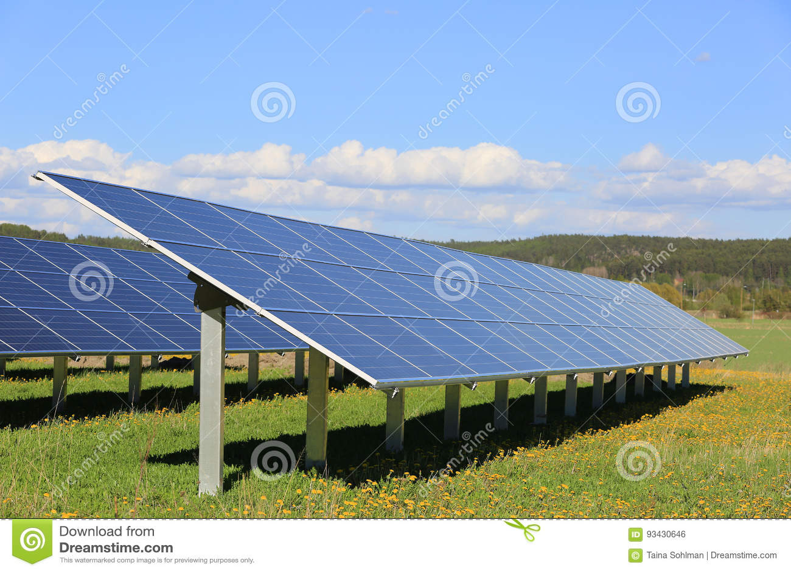 Painéis solares em Sunny Flower Field