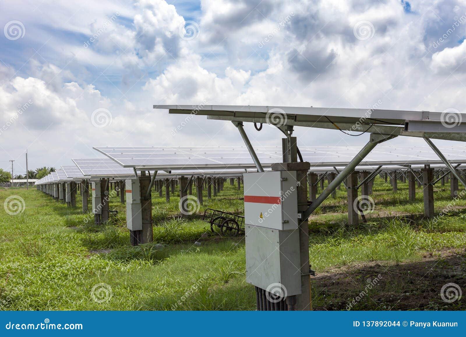Painéis solares no fundo solar do céu azul das explorações agrícolas