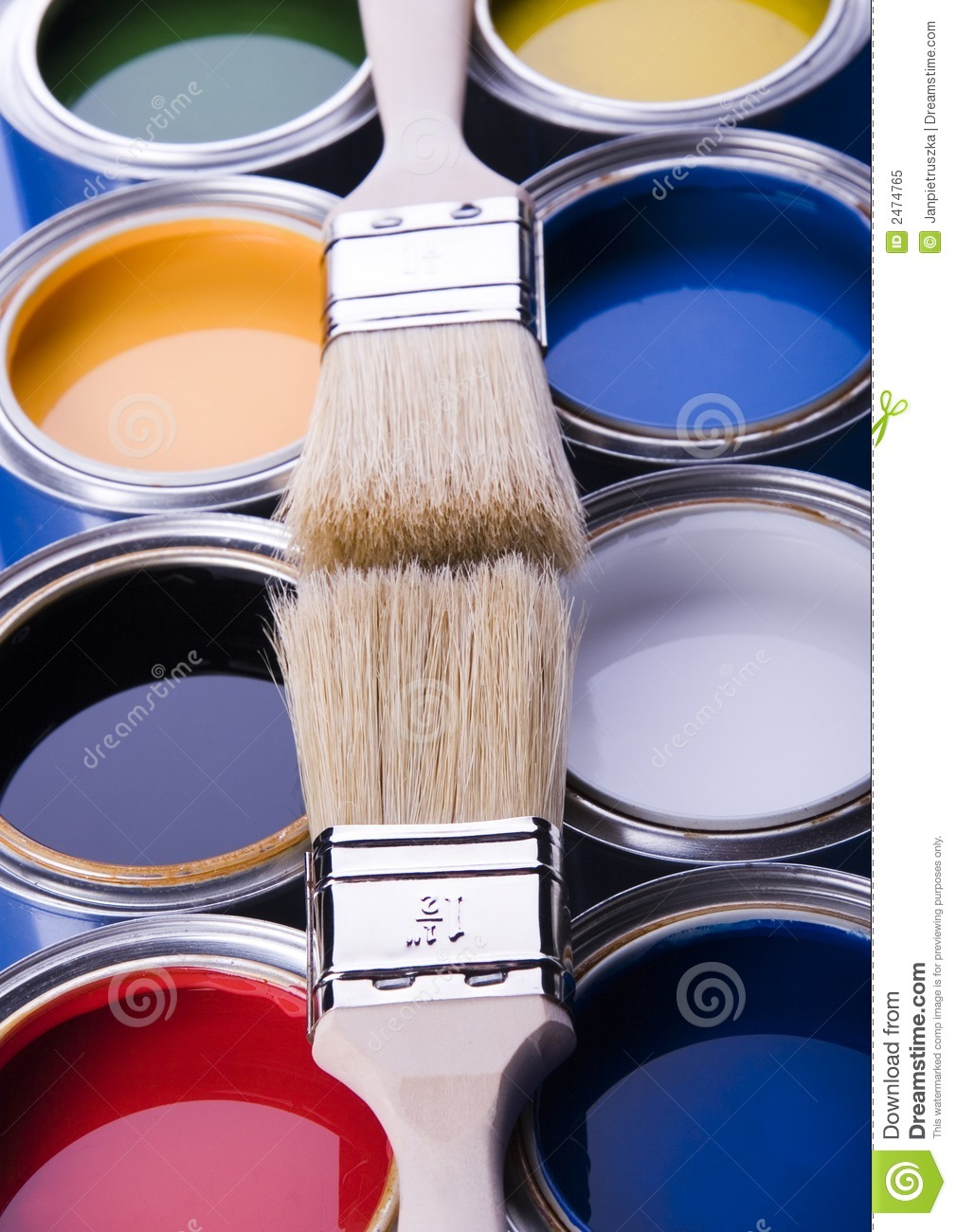Paint brush and paint