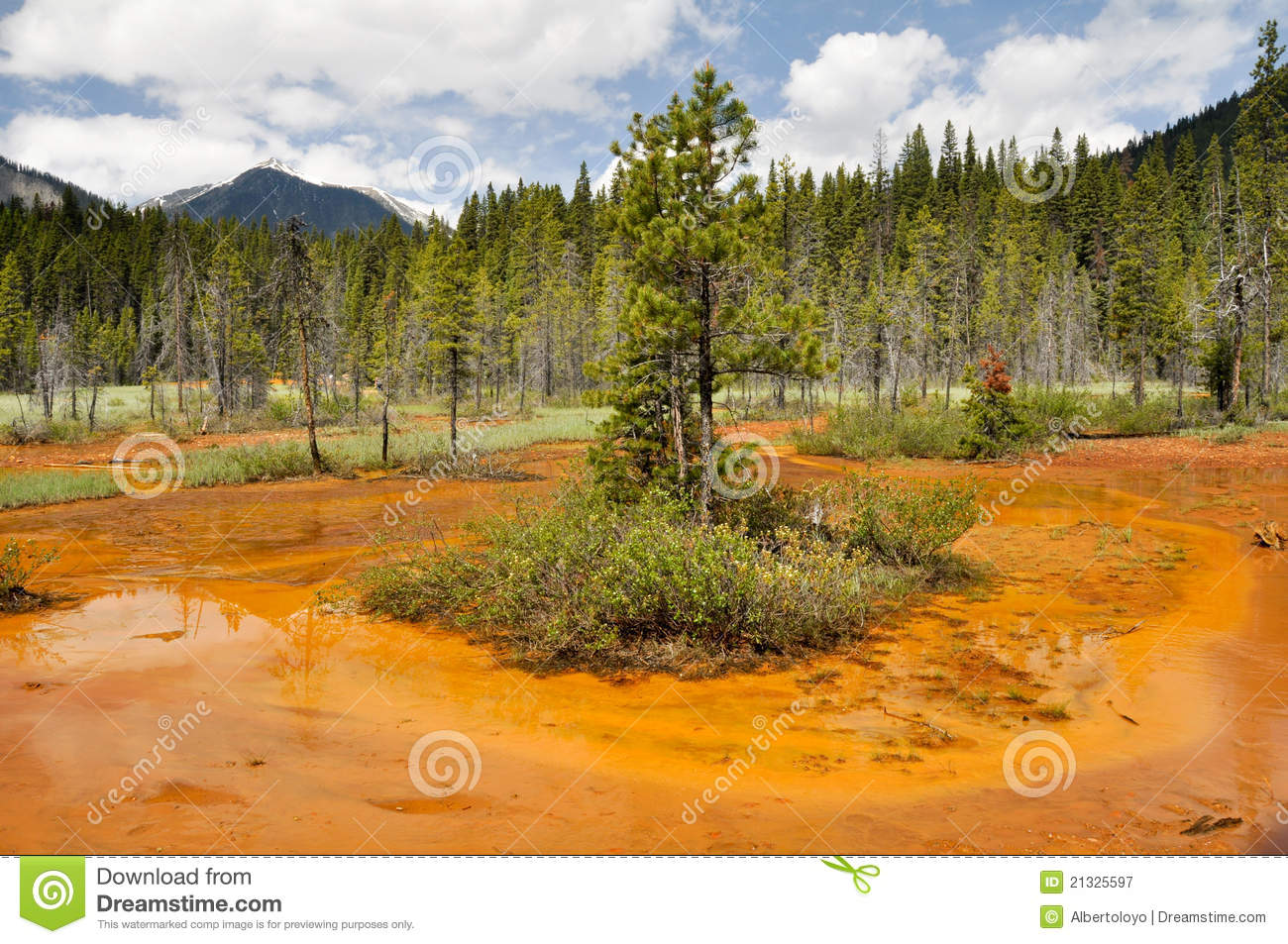 Paint pots in kootenay national park canada stock image image paint pots in kootenay national park canada sciox Image collections