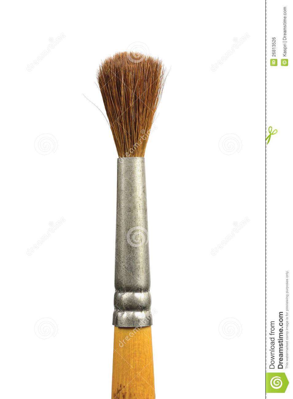Paintbrush Isolated Old Used Paint Squirrel Brush Royalty