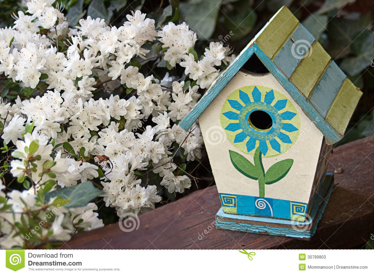 Painted Birdhouse And White Flowers Stock Image - Image ...