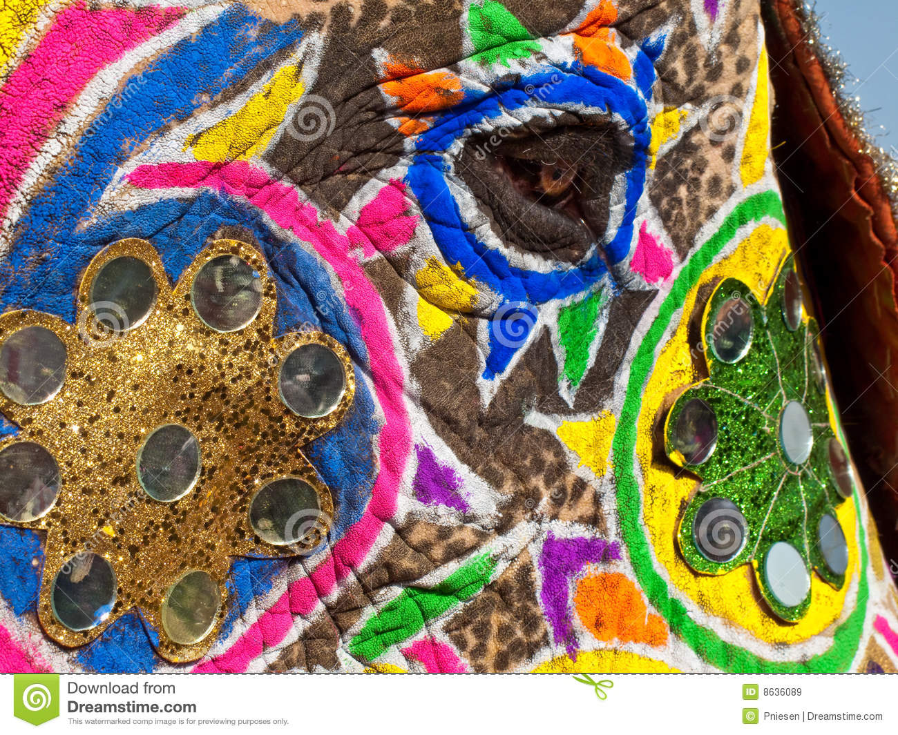 painted and decorated elephants face stock image image