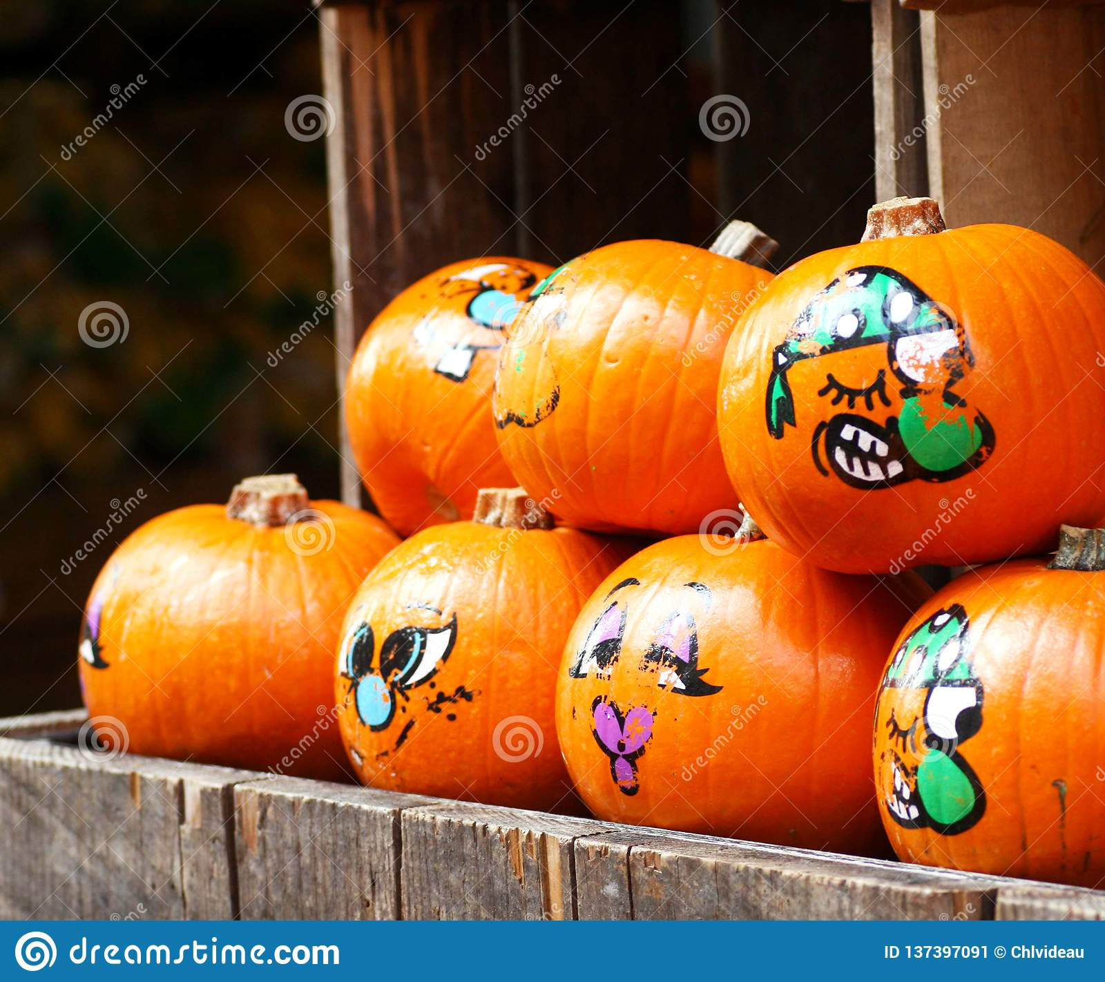 Painted decorative organic pumpkins in a market