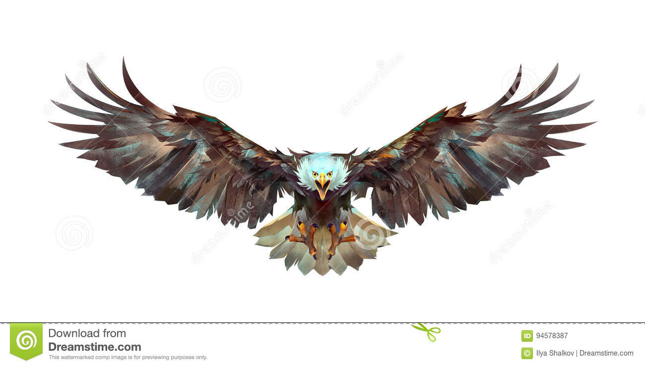 Painted A Flying Eagle On A White Background Front Stock Image ...