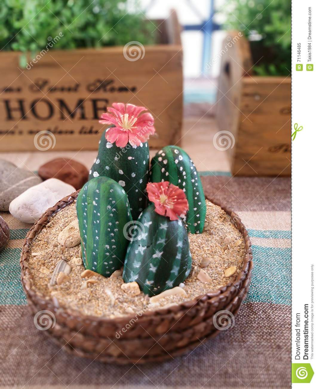 Painted Stones Look Like Cactus Stock Image - Image of stones ...