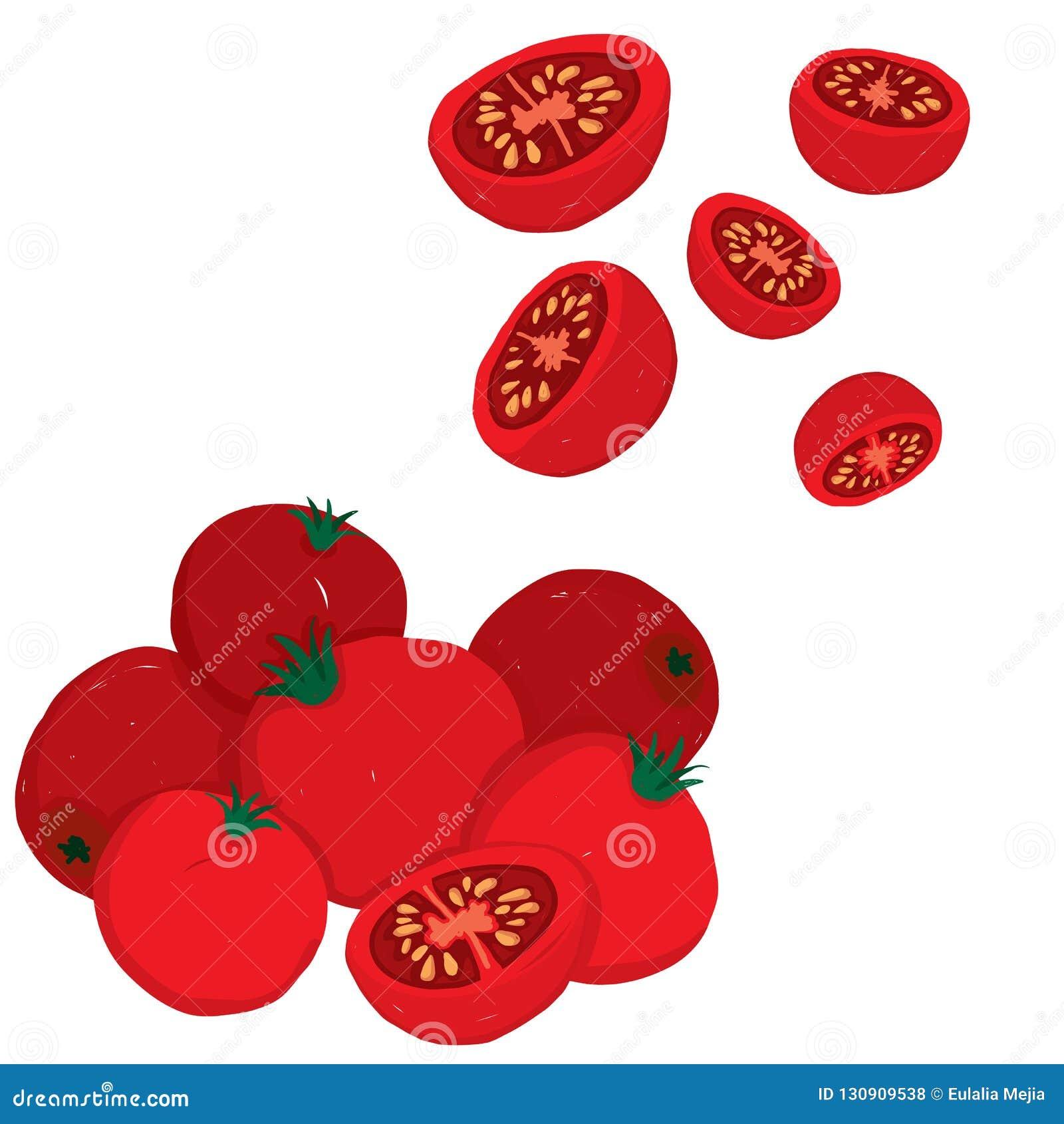 Painterly wektorowy ustawiający czereśniowi pomidory, surowy i pokrojony,