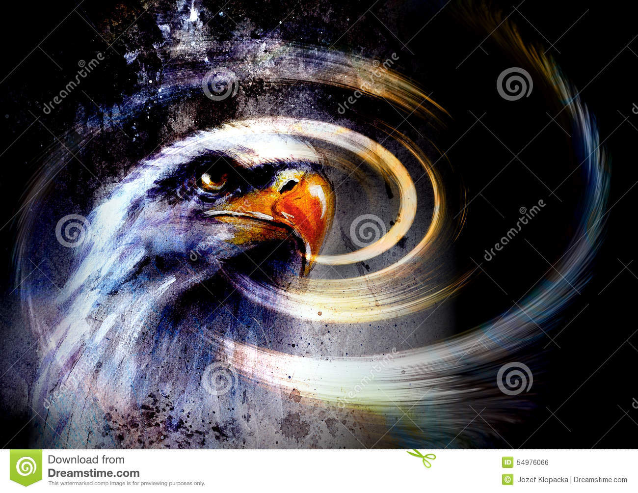 painting eagle and feathers on an abstract background usa map clipart graphic design us map clipart