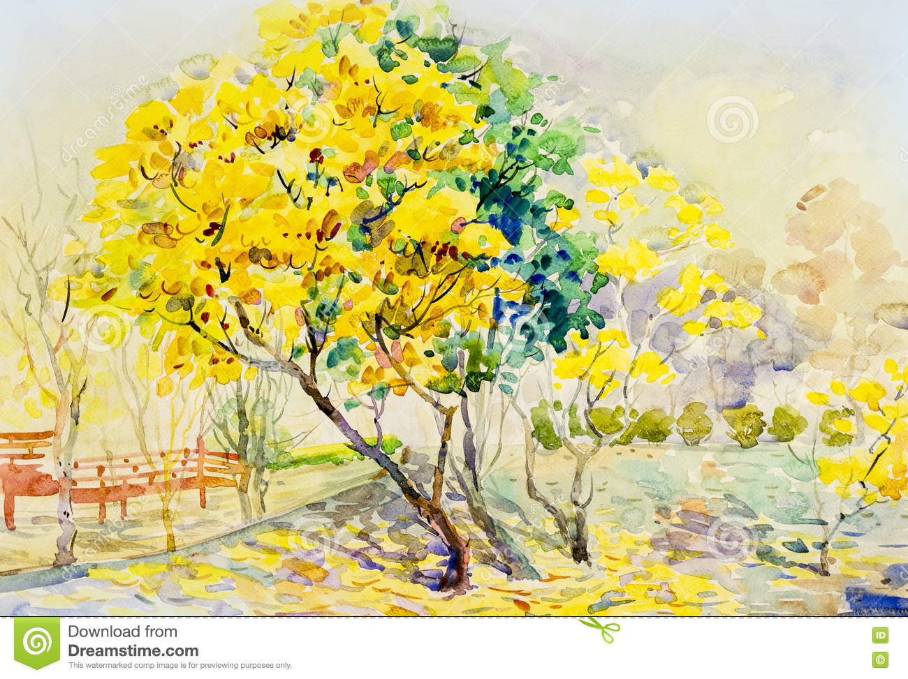 Painting Landscape Yellow Orange Color Of Golden Tree Flowers Stock