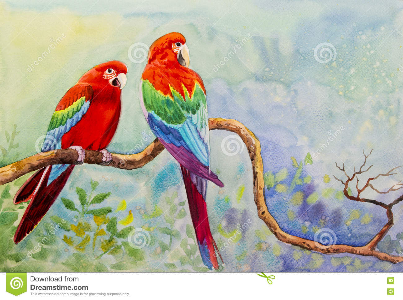 painting on paper colorful of macaw bird couple bird on a branch