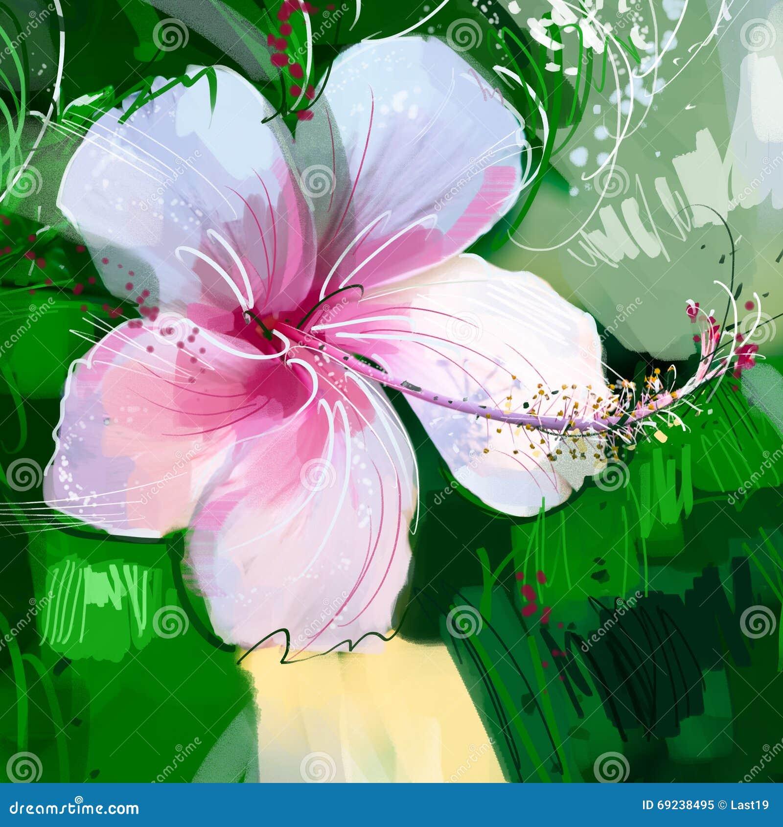 Painting Pink Hibiscus Flower Stock Illustration Illustration Of
