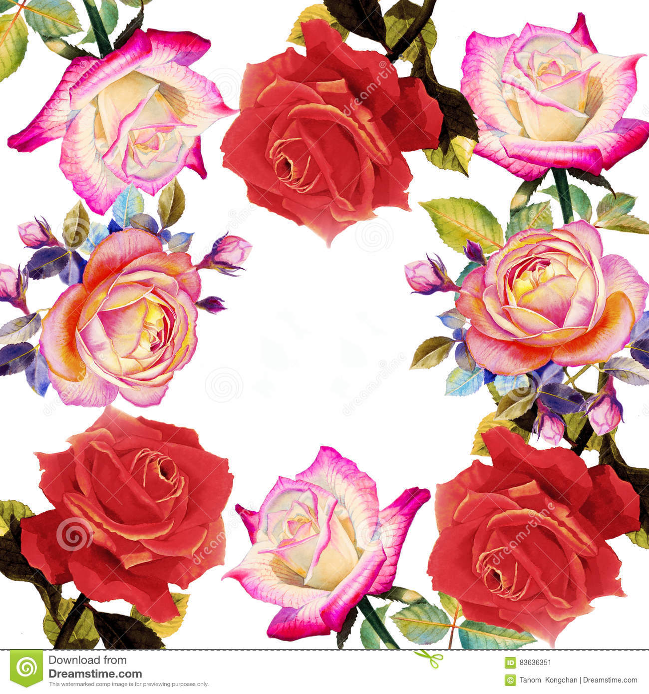 Painting Red Pink And Orange Color Of Roses Flowers. Stock ...