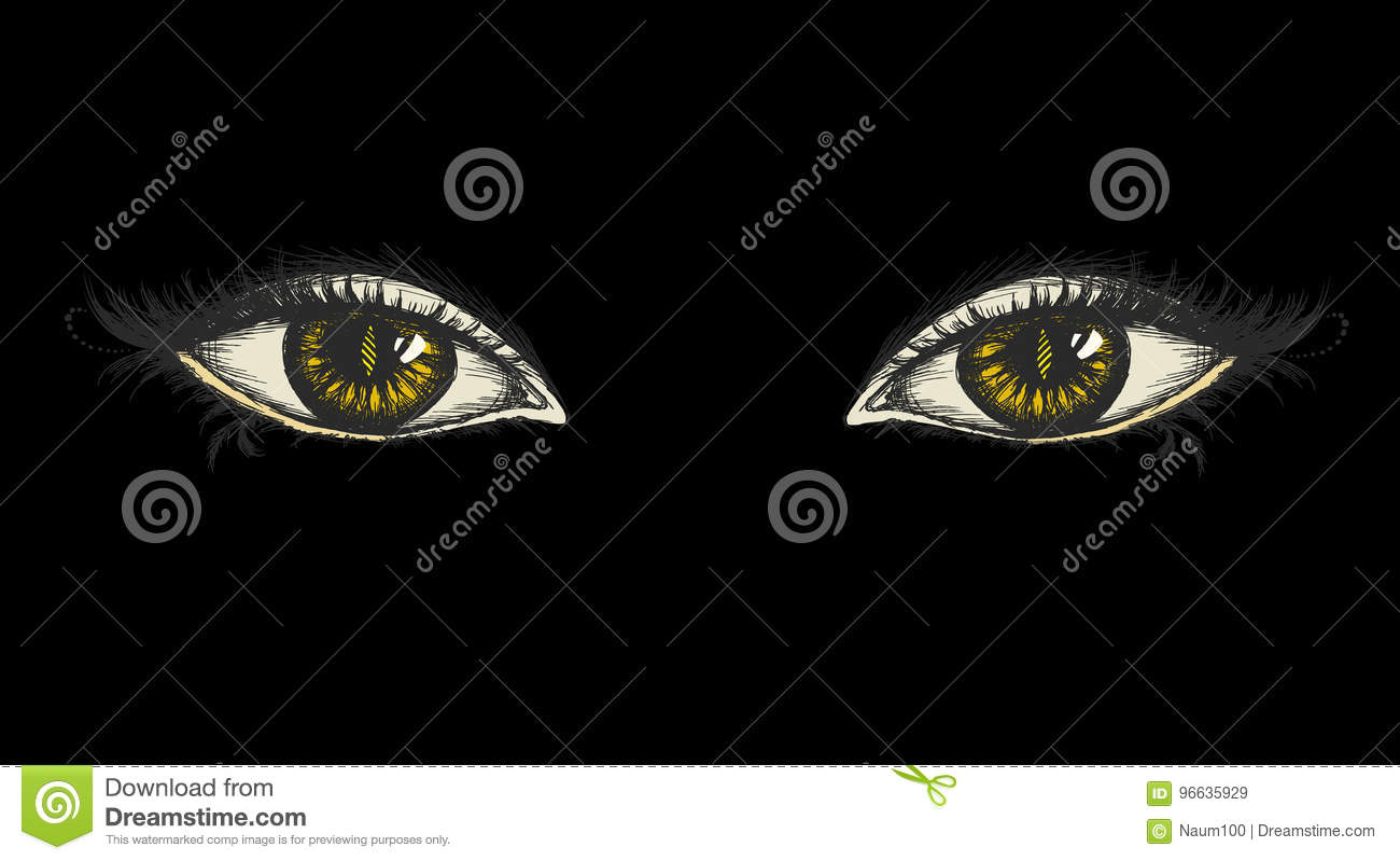 pair of eyes hand drawing stock vector illustration of make