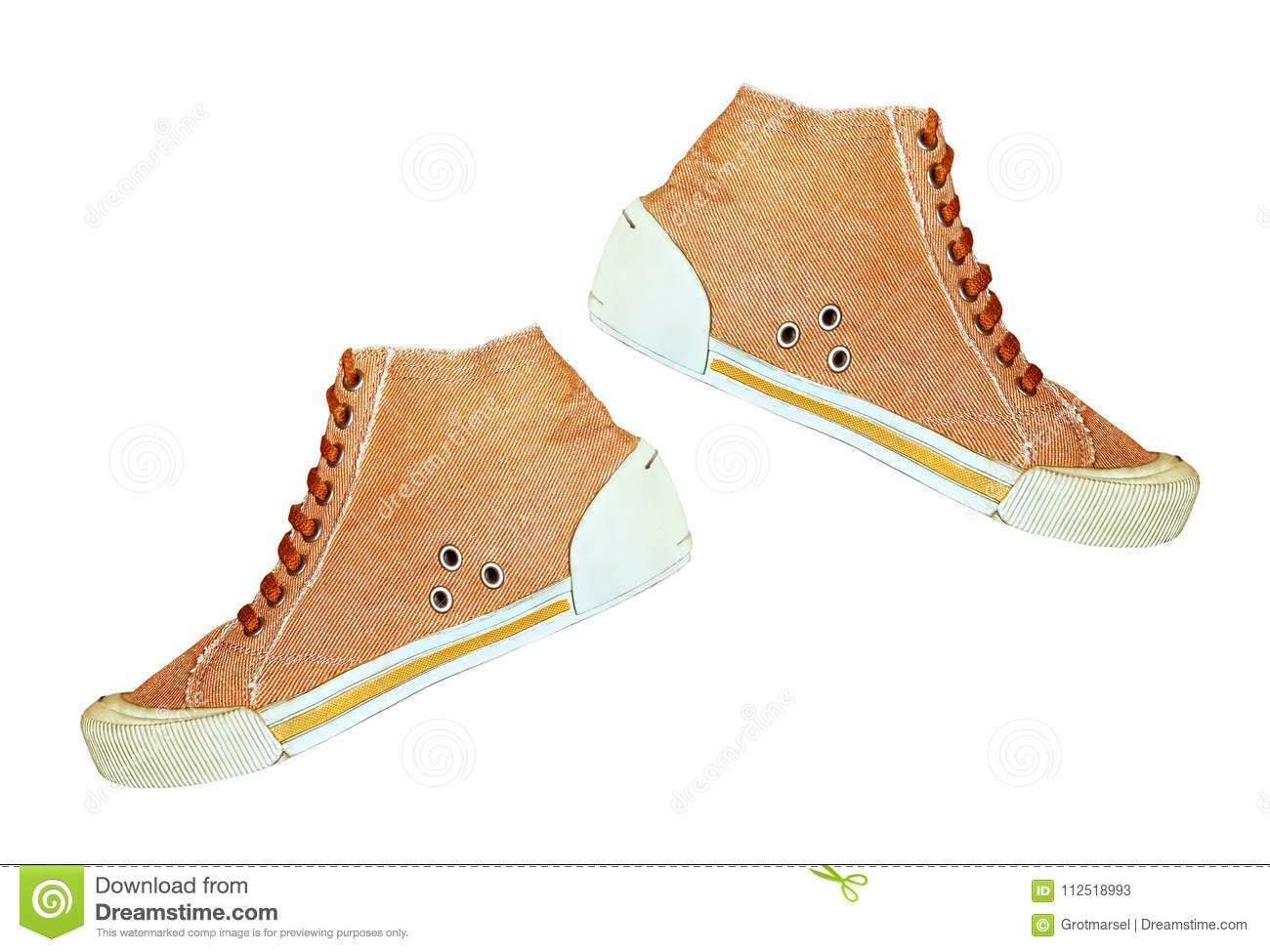 The pair of Trendy Gym shoe isolated on white background.