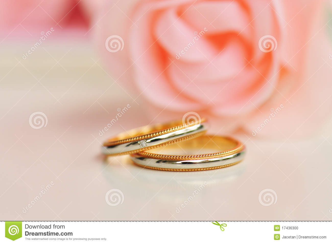 Pair Of Wedding Ring Roses In The Background Stock Photo - Image of ...