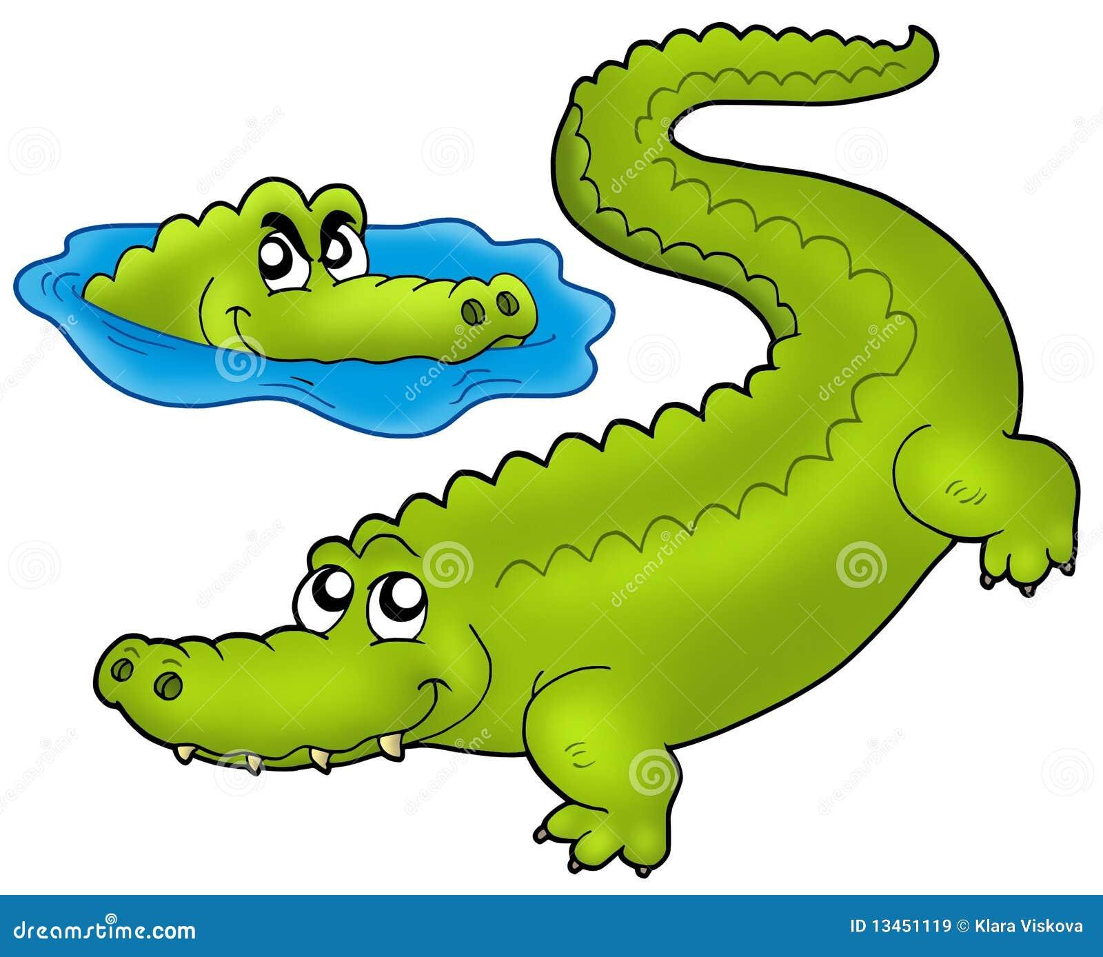 Paires de crocodiles de dessin anim images libres de droits image 13451119 - Dessin anime crocodile ...